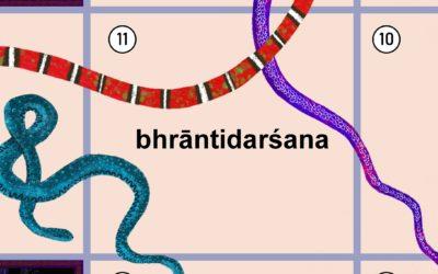 Co to jest bhrāntidarśana?