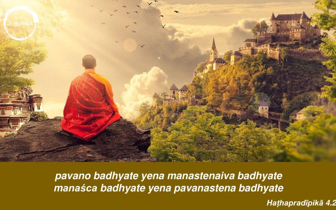 Oddech i umysł Yogaloka