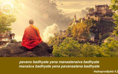 Oddech i umysł